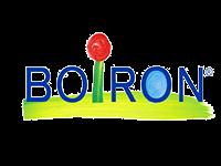 Impac ingénierie - Boiron